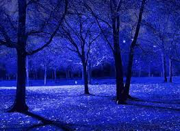 blue trees branches lidya s
