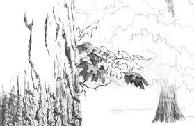 drawing trees beginning foreground leaf drawing how to draw