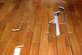 wsf wholesale floors moisture remediation