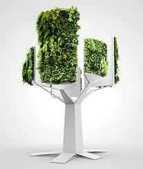 Vertical Gardens Miami - 332 best grass wall images on pinterest plants gardening and pots