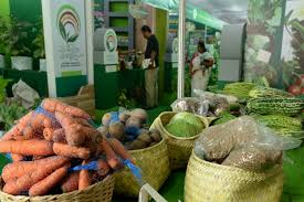 Natural Insecticide For Vegetable Garden by No More Pesticides How Kerala U0027s Kitchen Garden Revolution Is