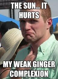 Ginger Memes - typical ginger memes quickmeme