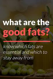 what are good fats on a ketogenic diet good fats list
