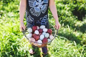 Backyard Chickens Magazine by Home Alchemist Farm U0026 Garden