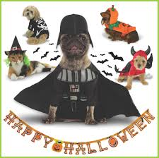 Halloween Pet Costume Howl Worthy Pet Costumes Furry Friend