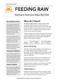 guide starting a raw food diet