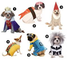 matching dog and owner halloween costumes halloween hounds 26 awesome dog costumes for 2015 dog milk