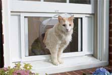 Exterior Cat Door Petsafe Cat Windoor