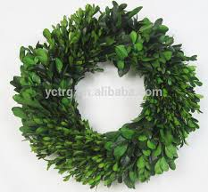 wholesale preserved boxwood wreath wholesale preserved boxwood