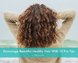 tips when youre bored of straight lifeless hair 10 hair care power tips you should really know hair la vie