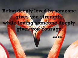 Loving Inspirational Quotes by 50 Unique Inspirational Love Quotes For Serious Lover