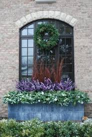 Plants For Winter Window Boxes - autumn and winter window box box and cyclamen outdoors
