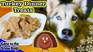 thanksgiving dinner for dogs diy treats snow dogs snacks