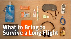 Long Distance Pillow Meme - what to pack to survive a long plane flight youtube