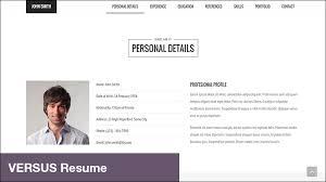 Wordpress Resume Themes 15 Professional Wordpress Themes For Programmers To Show Portfolio