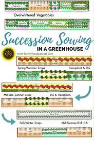 6463 best organic gardening tips images on pinterest organic