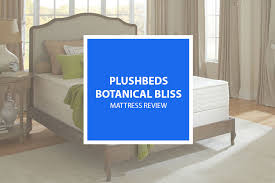 plushbeds botanical bliss mattress review 2017 all organic u0026 natural