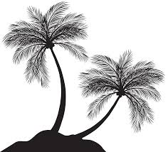 two palm trees silhouette png clip art gallery yopriceville