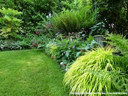 small garden border ideas light shade border plants in my garden my garden pacific nw