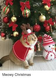 meowy christmas 25 best memes about meowy christmas meowy christmas memes