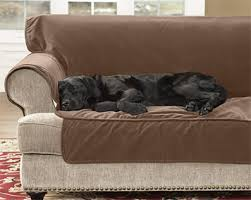 Dog Sofa Cover by Sofa Covers Dog Couch Protector Orvis Uk