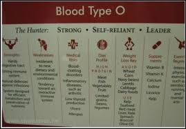 food pyramid are outdated blood types food pyramid and blood