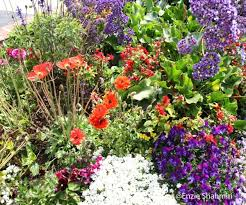 majestic house with flower garden ideas and front together with