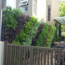 Home Vertical Garden by Vertical Gardens India