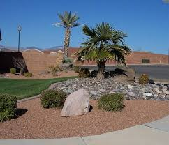 triyae com u003d desert backyard landscaping ideas various design