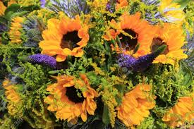 wedding flowers sunflowers blue and yellow wedding flowers sunflowers and eryngium or sea