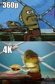 High Quality Memes - high quality meme