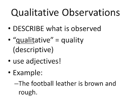 observations predictions and inferences 7 1 3explain the reasons