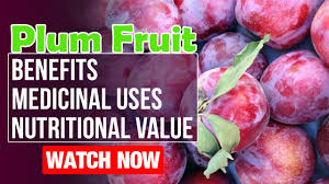 plum fruit benefits nutritional value and medicinal uses plum