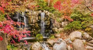 colorado u s japanese gardens rockford illinois gardens golf and more
