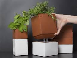 self watering indoor planters self watering pots quality dogs