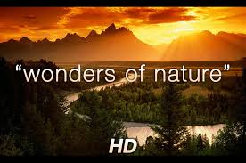 Amazing Pictures Of Nature by Wonders Of Nature