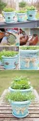 40 diy flower pot ideas art and design