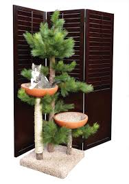 modern style tree branches arrangement for pets at home setting