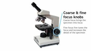 compound light microscope uses parts of a compound light microscope youtube