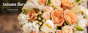 Phoenix Flower Shop Phoenix Florist Flower Delivery By Blooming Expressions Flowers