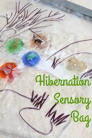 hibernation sensory bag challenge match the hibernating animals