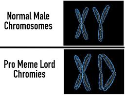 Biology Meme - dank meme university