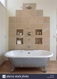 large chrome showerhead above metallic clawfoot bath in modern