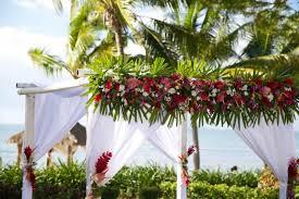 wedding arches nz fiji wedding flowers the flowers for your fiji wedding