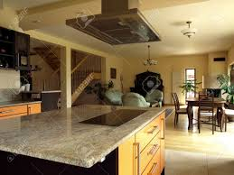 ultimate luxury kitchen with every modern amenity luxury modern