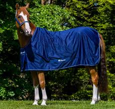 Buccas Rugs Bucas Shamrock Power Pony Cooler Rug All The Best Rugs
