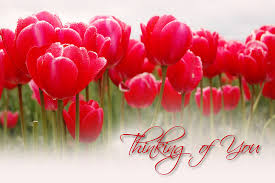 thinking of you flowers flowers to show someone you re thinking of them anza amo florist