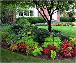 Backyard Trees For Shade - backyards bright trees for small backyards 14 front yard