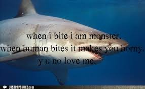 Funny Y U No Memes - animal capshunz y u no love me funny animal pictures with