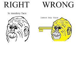 Le Meme - 25 best memes about le monkey face le monkey face memes
